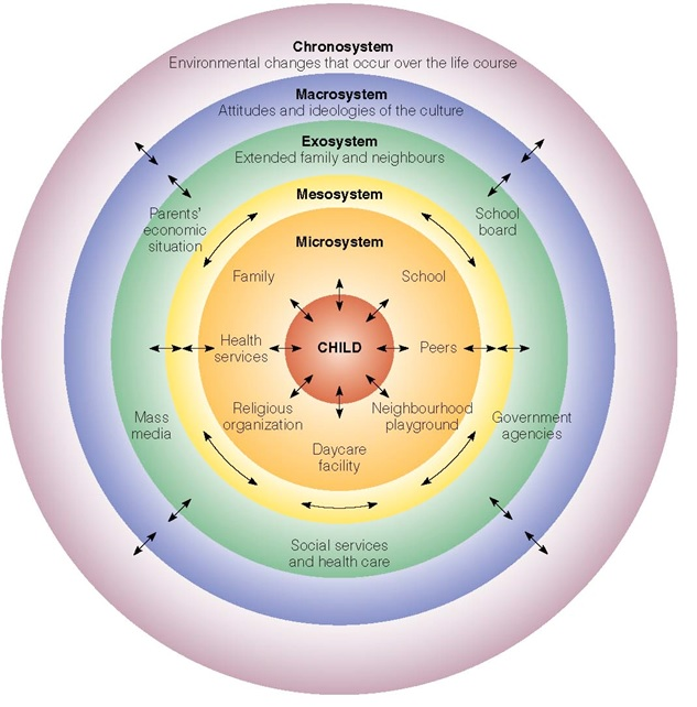 "ecological system theory Urie bronfenbrenner developed a model called the ""ecological systems theory"" that attempts to explain what factors my ecological systems will always be."
